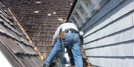 Squirrel Attic Control Wildlife Removal Davidson NC Denver NC Mooresville